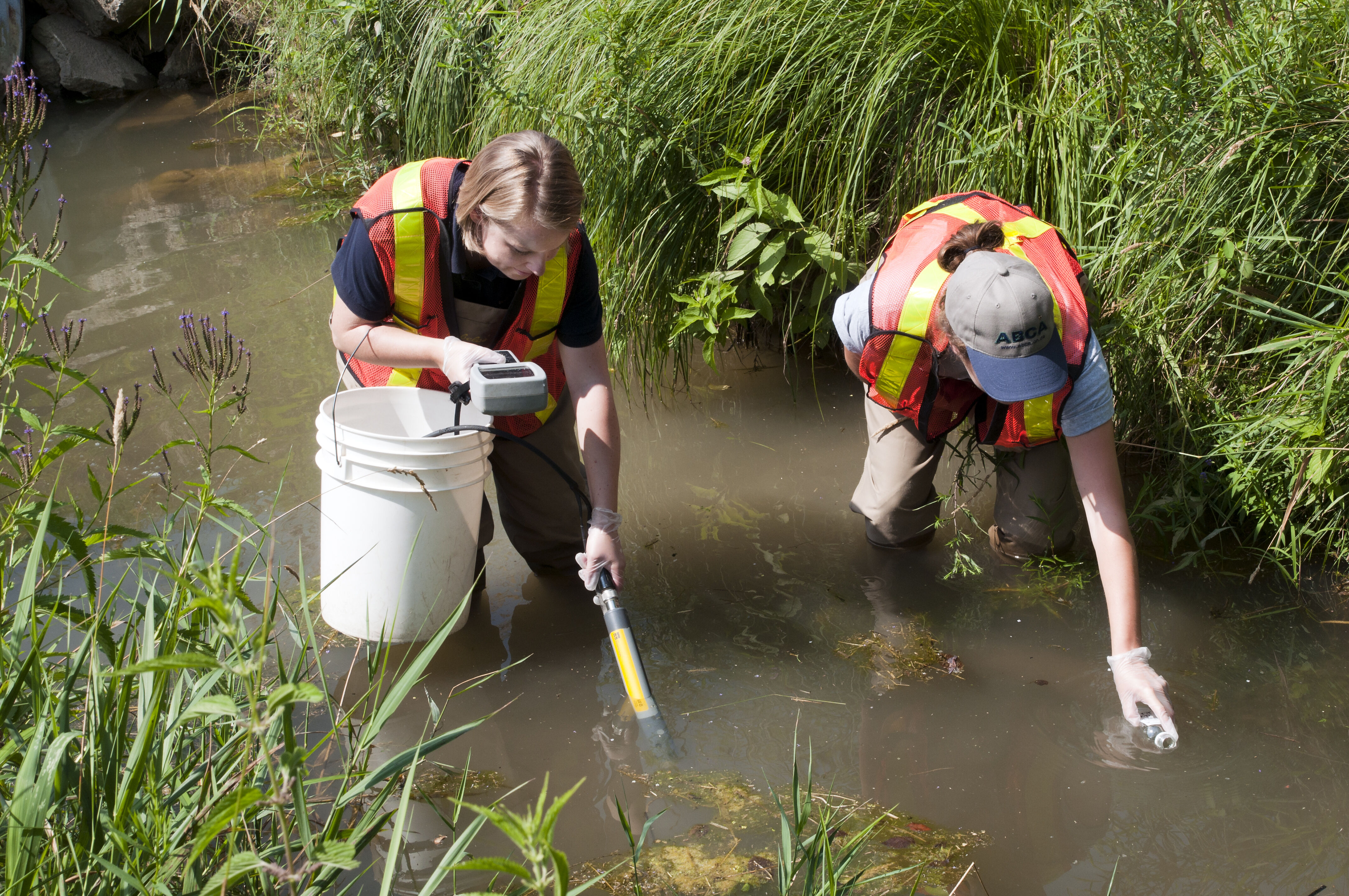 Conservation Authorities monitor the health of natural resources in their watershed