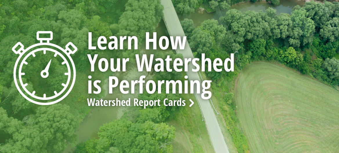 Learn how your watershed is performing